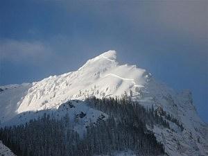 Republic Mountain, Cooke City