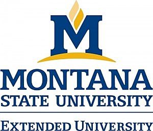 Montana State Extended University