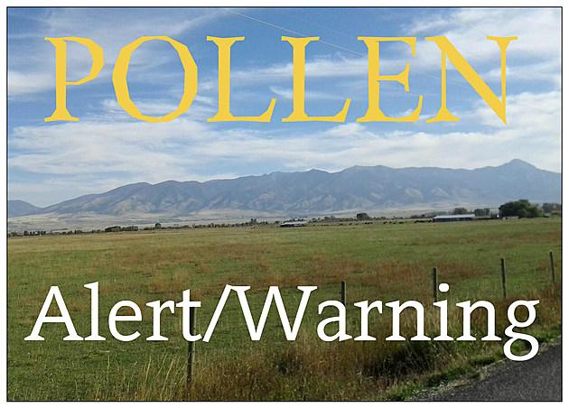 Pollen Alert/Warning - KMMS