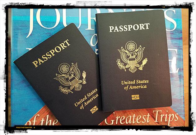 Passports - Michelle Wolfe